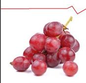 Сухой экстракт виноградных косточек